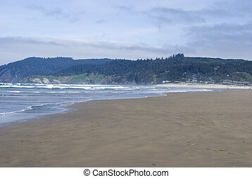 beach in the pacific northwest - view of the beach in the...