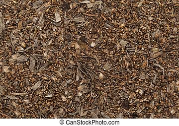 orgánico, seco, común, Ajenjo, Seeds.,