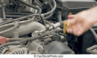 Mechanic checks the car motor engine oil level - Auto...