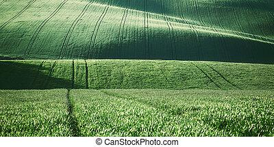 Vintage Agricultural Landscape - Vintage agricultural...