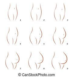Pregnancy Growth Belly Sequence - Pregnancy icons - growth...