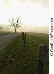 Spring, Cades Cove, Great Smoky Mtns NP, TN - Spring on...