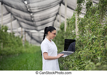 Woman with laptop in apple orchard - Young woman agronomist...