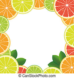 White Centre Citrus Fruits - Citrus fruits with foliage on...