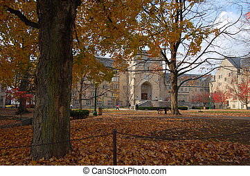 indiana university campus - old building and tree in autumn...