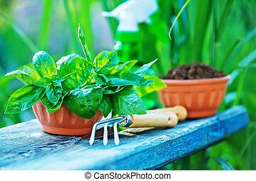 gardening utensil on a table in the garden