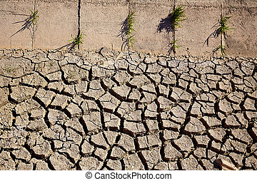 Dried irrigation ditch clay soil in Albufera fields - Dried...