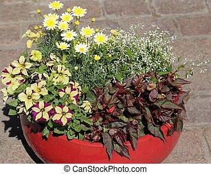 Decorative flower arrangement - Ceramic flower pot with a...