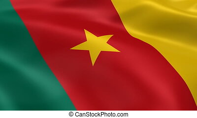 Cameroonian flag in the wind Part of a series