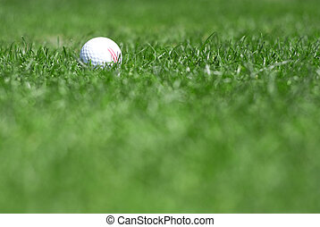 green grass and golfball - pictire of green grass with white...