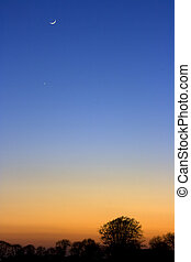A cresent moon at sunset above silhouetted trees