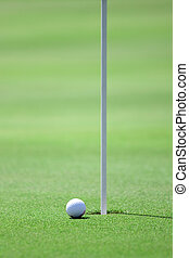 golf field and golfball - pictire of golf field with white...
