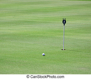 golf field - pictire of golf field with golfball and hole