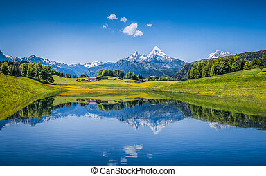 Idyllic summer landscape with clear mountain lake in the...