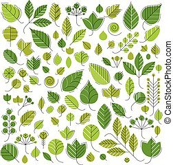 Spring tree leaves, botany and eco flat images Vector...
