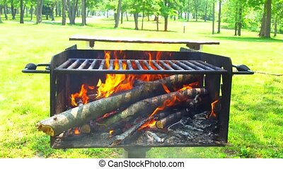 Hot coals in the fire fire wood charcoal