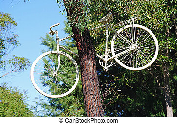 Bicycle up in a tree - A white Bicycle stuck up in a tall...