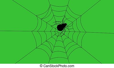 big spider, coming from the 4 corners of the cobweb