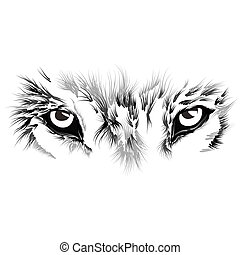 beautiful Wolf face. Vector illustration