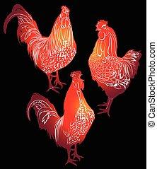 cock. cock bird. cock bird farm. red cock. red cock on a...