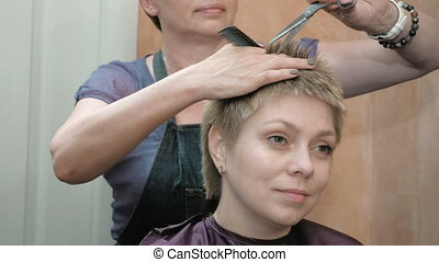 Hairdresser cuts combs and styles womans hair - Hairdresser...