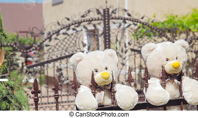 Two teddies bears on the fence in the wedding day in full HD