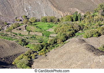 agricultural fields in a mountain valley