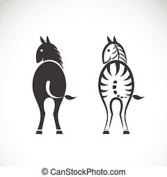 Vector images of horse and zebra on a white background.