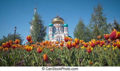 Uspensky Cathedral in Omsk on background of beautiful tulips.