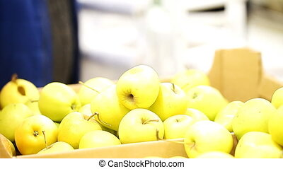 chooses apples on the counter supermarket - picks apples at...