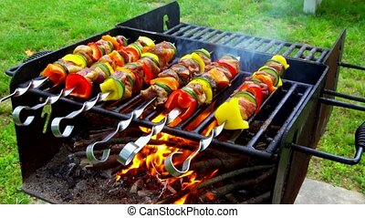 Kebab roasted on coals barbecue