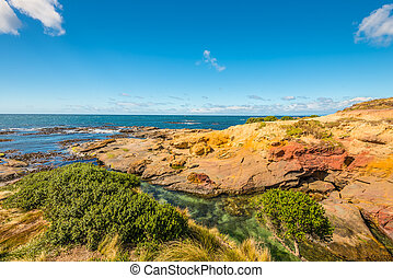 New Zealand colorful coast landscape - New Zealand colorful...