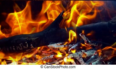Hot coals in the fire fire wood