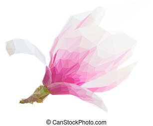 Blossoming pink magnolia Flowers - Low poly illustration...