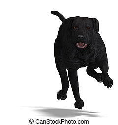 Labrador Retriever Dog 3D rendering with clipping path and...