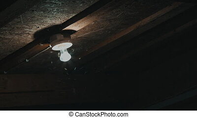 insects fly to the light bulbs - many insects fly to the...