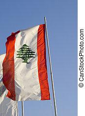 Lebanese Flag - An elongated lebanese flag hanging on a pole