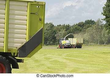 forage harvester and transport of grass with tractor and a...
