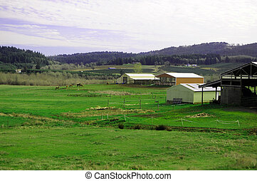 Farm land - Grass farm land with horses and barns with...