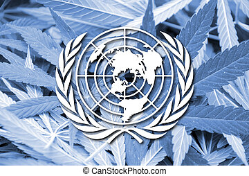 Flag of United Nations, on cannabis background