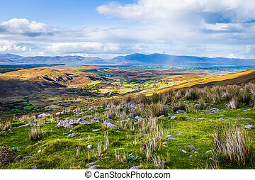 Colourful undulating Irish landscape in Kerry with grass in...