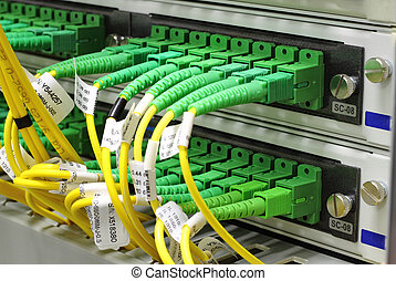 SC connectors in patch panel - Green singlemode sc...