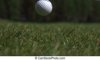 The stick on the Golf ball in the grass