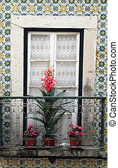 window with flowering plants on sill in Lisbon - beautiful...