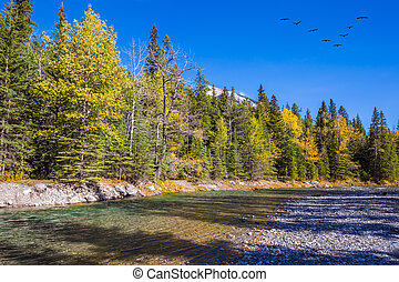 Flock of migratory birds in the blue sky. Mountain valley in...