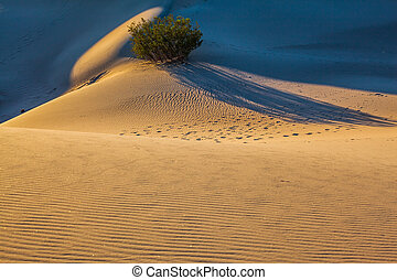 The traces of people covered dunes - Small ripples of sand...