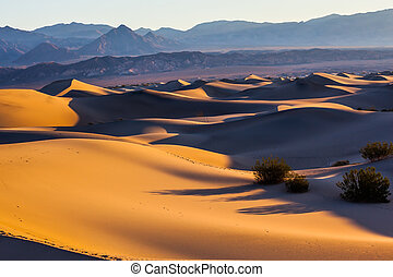 Smooth slopes of sand dunes Early morning in Mesquite Flat...