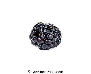 Single fresh blackberry isolated on white background