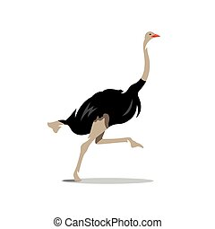 Vector Ostrich Cartoon Illustration. - Big Fast Bird runs...