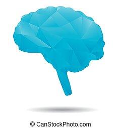 blue brain polygon
